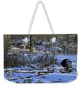 A Time To Thaw Weekender Tote Bag