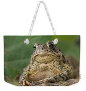 A Toad Appears To Be Frowning He Sits Weekender Tote Bag