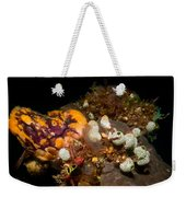 A Ton Of Tunicates Weekender Tote Bag