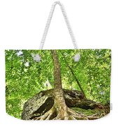 A Tree And It's Roots Weekender Tote Bag