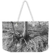 A Tree In Shiawassee Park, Living On The Edge Weekender Tote Bag