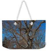 A Tree In Winter- Horizontal Weekender Tote Bag