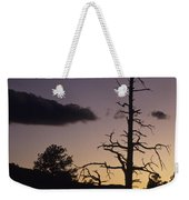 A Tree Is Silhouetted By The Setting Weekender Tote Bag