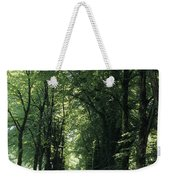 A Tree Lined Path Leads To Mad King Weekender Tote Bag