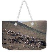A View Of Sheep In The Judean Desert Weekender Tote Bag