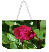 A Watered Rose  Weekender Tote Bag