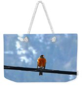 A Welcome Sign Weekender Tote Bag