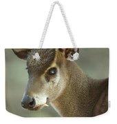 A Western Tufted Deer Elaphodus Weekender Tote Bag