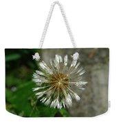 A Wet Dandelion  Weekender Tote Bag