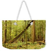 A Whisper In The Rainforest Weekender Tote Bag