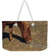 A Wild Pony In Assateague Weekender Tote Bag