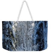 A Winter View  Weekender Tote Bag