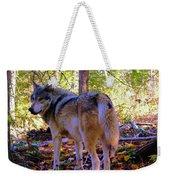 A Wolf Gazes Back Weekender Tote Bag