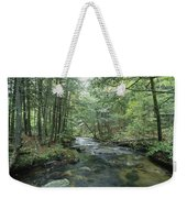 A Woodland View With A Rushing Brook Weekender Tote Bag