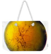 A World All Its Own Weekender Tote Bag