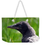 A Young Crow Weekender Tote Bag