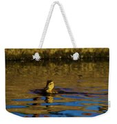 A Young Duckling Weekender Tote Bag