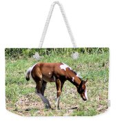 A Young Painted Colt  Weekender Tote Bag