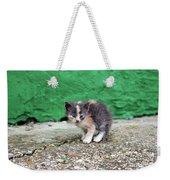 Abandoned Kitten On The Street Weekender Tote Bag