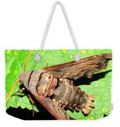 Abbotts Sphinx Moth Weekender Tote Bag