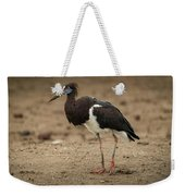 Abdim Stork Walks Right-to-left Across Muddy Ground Weekender Tote Bag