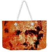 Abraham Lincoln 4d Weekender Tote Bag