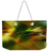 Abstract 060210 Weekender Tote Bag