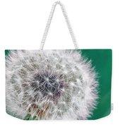 Abstract Dandy Lion - Teal Weekender Tote Bag