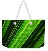 Abstract Of Green Leaf Of Exotic Palm Tree Weekender Tote Bag