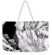 Abstraction Of Nature No. 4 Weekender Tote Bag