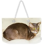 Abyssinian Cat On Chair Pillow, Symbol Of Comfort Weekender Tote Bag