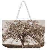 Acacia Tree In Sepia Weekender Tote Bag