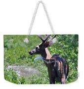 Acadia Buck 2 Weekender Tote Bag