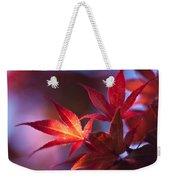Acer Kaleidoscope Weekender Tote Bag