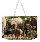 Addo Elephant Family Weekender Tote Bag