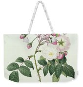 Adelia Aurelianensis Weekender Tote Bag by Pierre Joseph Redoute