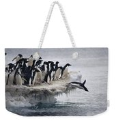 Adelie Penguin Pygoscelis Adeliae Weekender Tote Bag by Tui De Roy