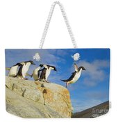 Adelie Penguins Jumping Weekender Tote Bag