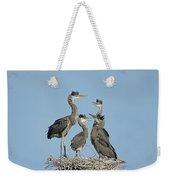 Adolescent Great Blue Herons Weekender Tote Bag