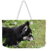 Adorable Alusky Pup Creeping Through Tall Blades Of Grass Weekender Tote Bag