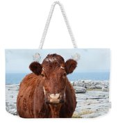 Adorable Brown Cow Standing On The Burren Weekender Tote Bag