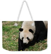 Adorable Face Of A Black And White Giant Panda Bear Weekender Tote Bag