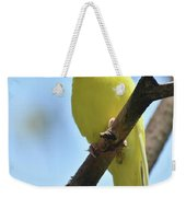 Adorable Face Of A Yellow Budgie Parakeet Weekender Tote Bag