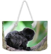 Adorable Goeldi's Marmoset In A Tree Weekender Tote Bag