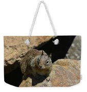 Adorable Up Close Look Into The Face Of A Squirrel Weekender Tote Bag