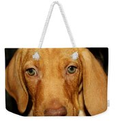 Adorable Vizsla Puppy Weekender Tote Bag