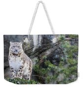Adult Snow Leopard Standing On Rocky Ledge Weekender Tote Bag