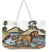 Aesop: Dog & Shadow, 1484 Weekender Tote Bag