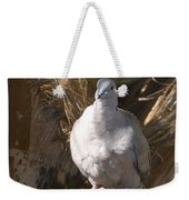 African Collared Dove 3 Weekender Tote Bag