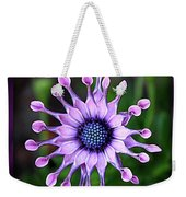 African Daisy - Hdr Weekender Tote Bag